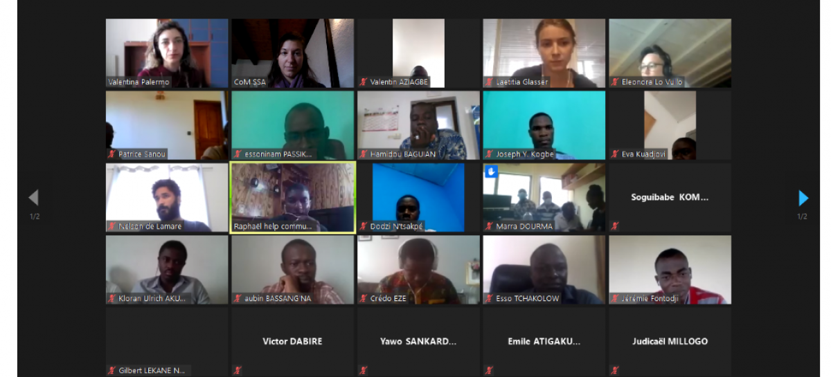 CoM SSA cities and partners from 8 countries receive intensive online training on SEACAP development during COVID-19 crisis