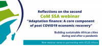 Adaptation finance, a core component of post-COVID-19 economic recovery